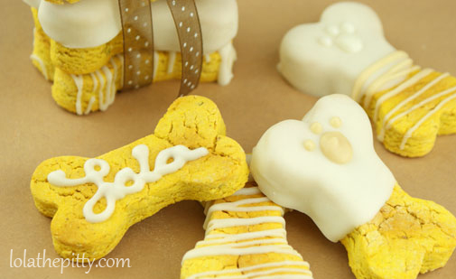 Lola's Homemade Pumpkin Dog Biscuits - @lolathepitty