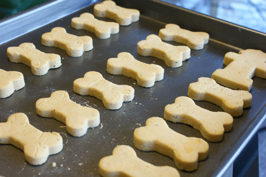 Lola's Homemade Pumpkin Dog Biscuits