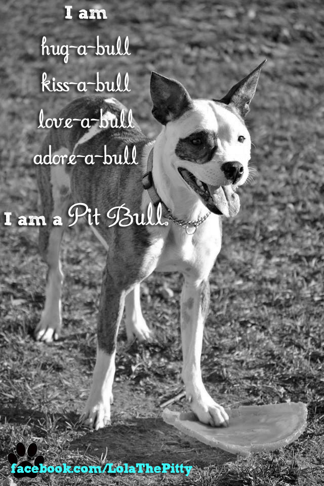 LolaThePitty.com Loveable Quote