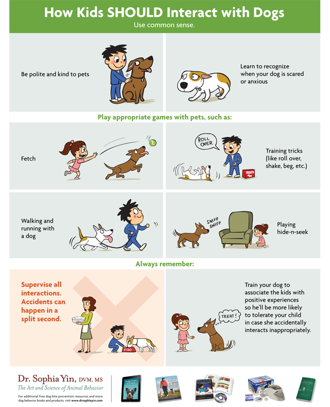 How Kids SHOULD Interact With Dogs - Lola The Pitty 'My Dog Bit My Child' - poster via Dr. Sophia Yin