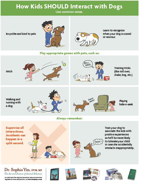 Dog Safety With Children - www.lolathepitty.com