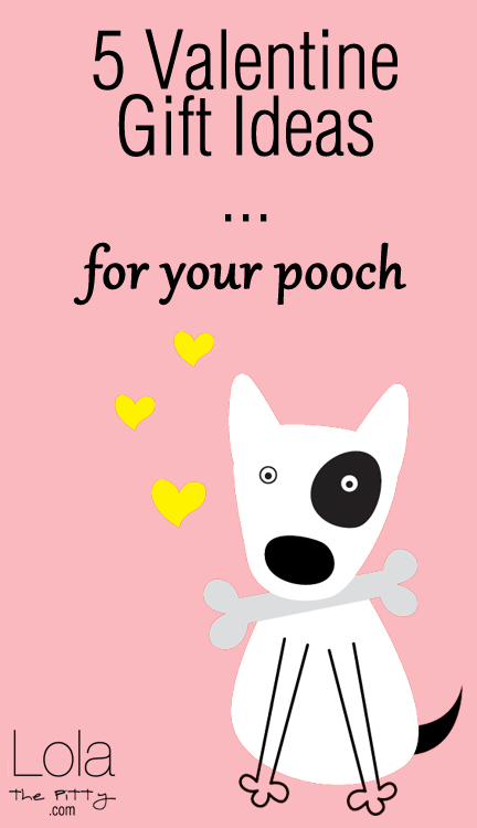 5 Valentine Gifts (For Your Dog!) lolathepitty.com