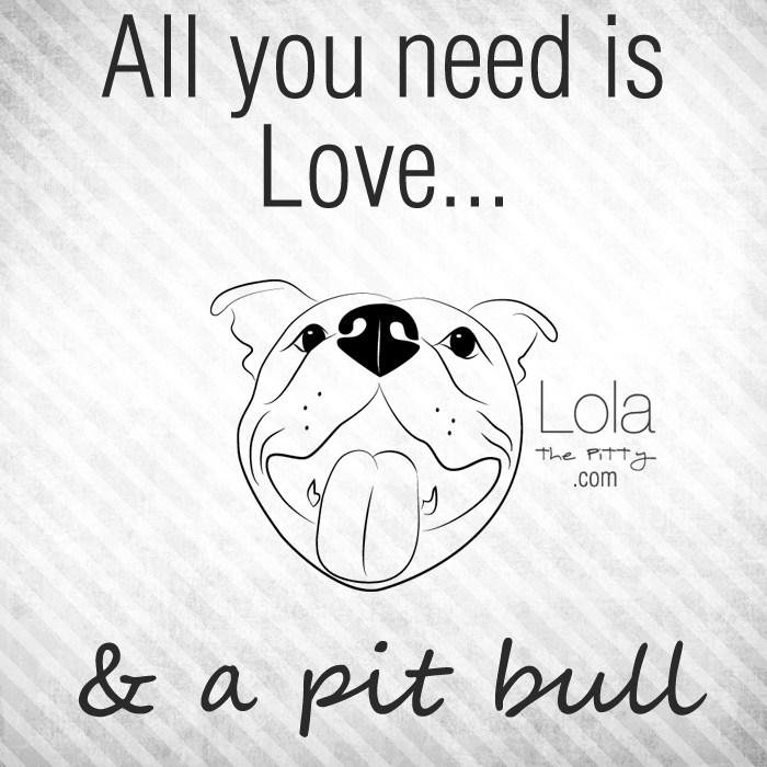 Quote: All You Need Is Love...and a pit bull - Lolathepitty.com