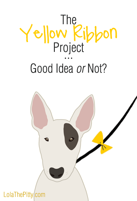 The Yellow (Dog) Ribbon Project (used to indicate a dog needing space by tying a yellow ribbon on their leash) - Good Idea or Not?! Can you see the downsides? -LolaThePitty.com