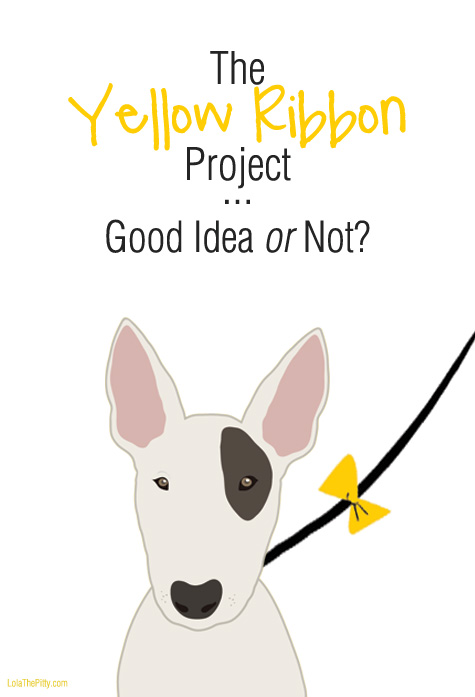 The Yellow Ribbon (used to indicate a dog needing space) - Good Idea or Not?!