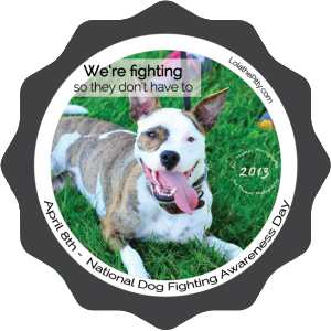 dog-fighting-awareness-lolathepitty2