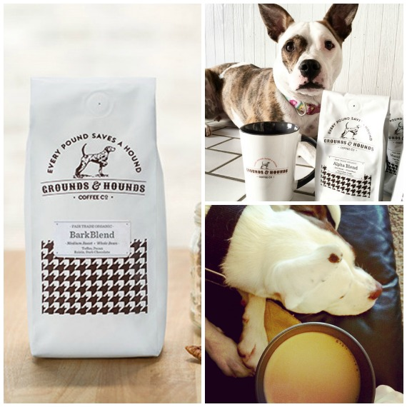 Lola the Pitty's Holiday Gift Guide for Dog Lovers - Grounds & Hounds Coffee
