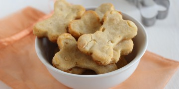 Ginger-Apple-Dog-Treats 008