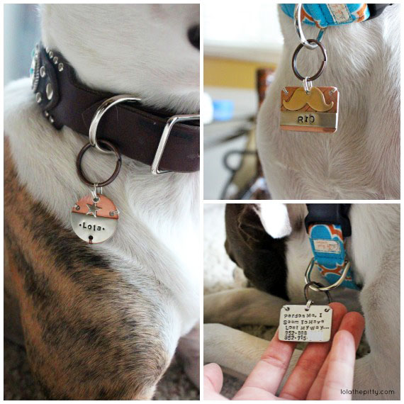 Lola the Pitty's Holiday Gift Guide for Dog Lovers - Woo Woo Workshop Dog Accessories