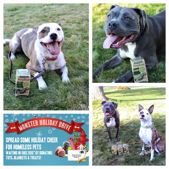 Monster Holiday Drive - lolathepitty.com