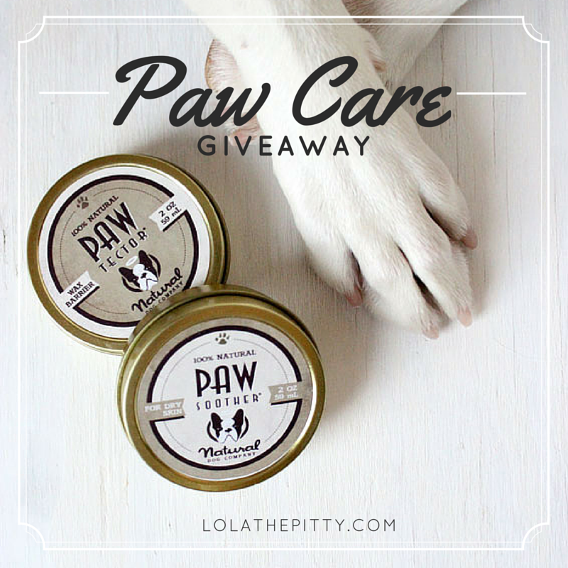 Natural Dog Company Paw Products Review + Giveaway! lolathepitty.com