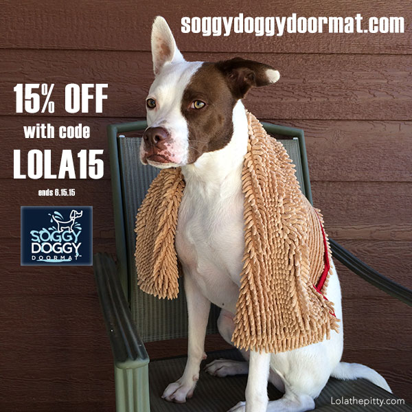 Soggy Doggy Super Shammy Review and Coupon Code! - Lolathepitty.com