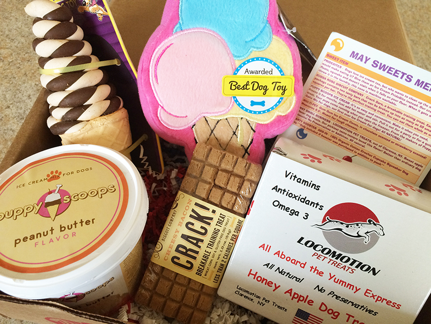 Pooch Party Packs Subscription Box | Review | Lolathepitty.com