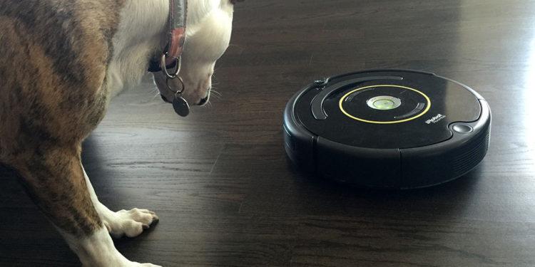 Lola-Roomba