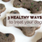 3 Healthy Ways to Treat Your Dog - lolathepitty.com