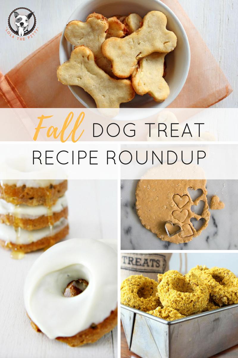 Fall Dog Treat Recipe Roundup - Lolathepitty.com