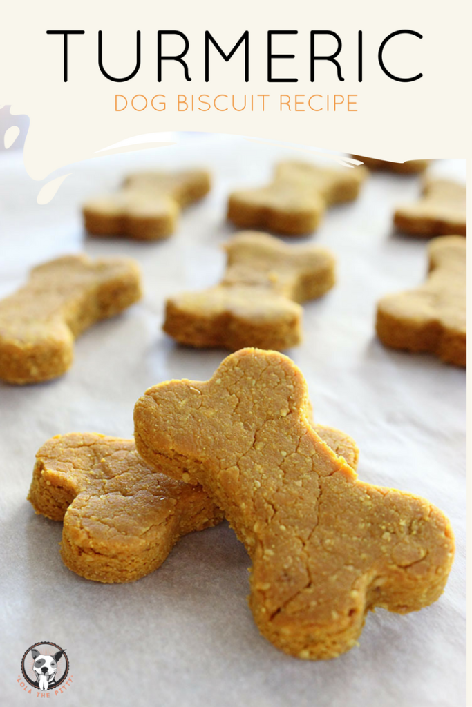 Turmeric Dog Treat Recipe via Lolathepitty.com!