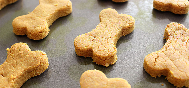 Turmeric Dog Treat Recipe via Lolathepitty.com