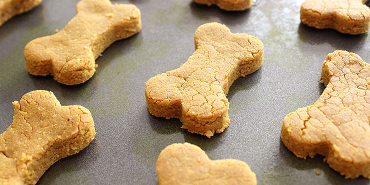 Turmeric Dog Treat Recipe via Lolathepitty.com