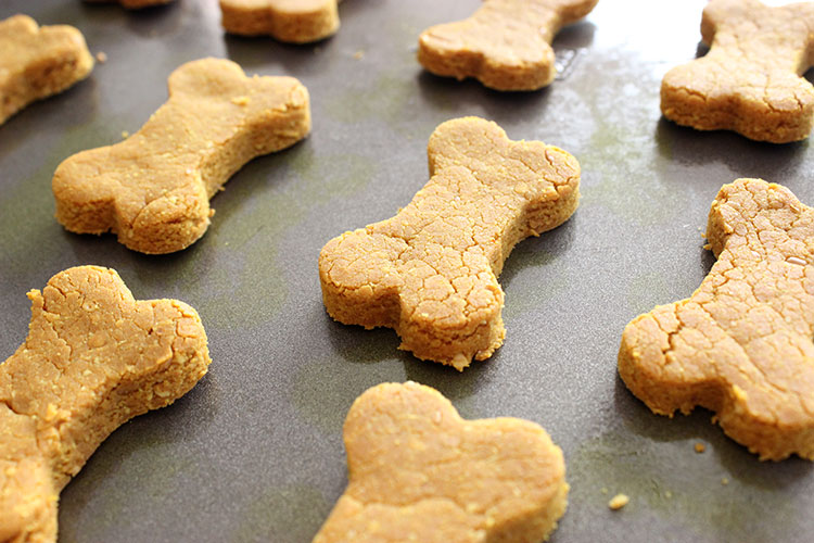 Turmeric Dog Biscuit Recipe Lola The Pitty